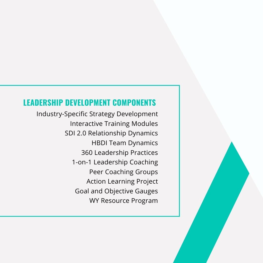 Leadership Development Bottom Left